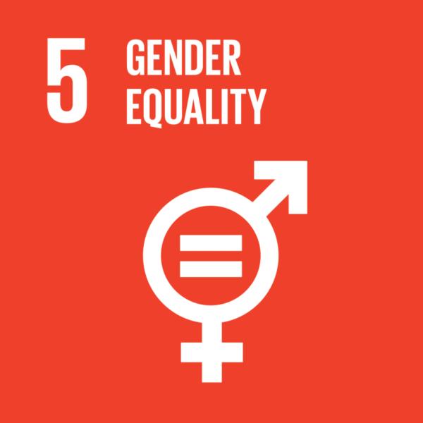 Gender Mainstreaming Checklist