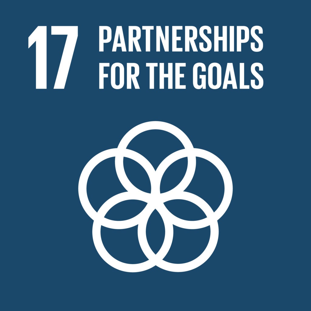The global goal no 17