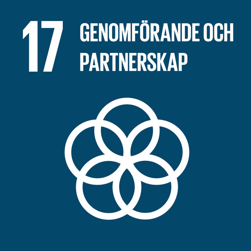 Genomförande och partnerskap