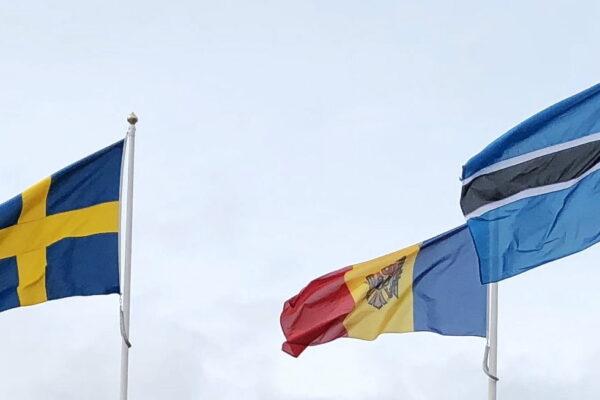 Ju fler desto bättre! Botswana, Moldavien och Sverige i spännande partnerskap